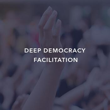 Deep democracy facilitation by Inclusion international